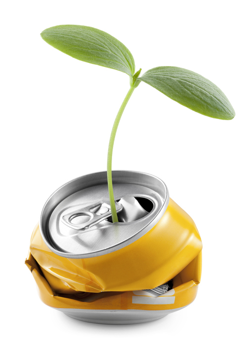 [sprout from a can]